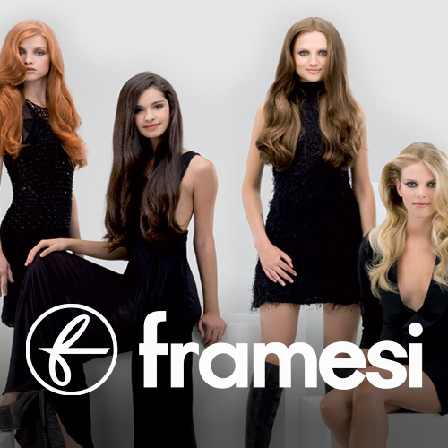 framesi salon products distributor