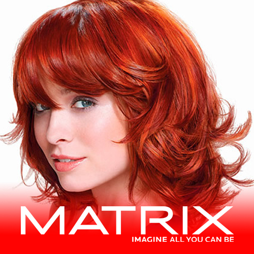 matrix salon products distributor